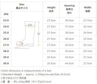 画像1: NR021 冷凍庫用〈-40℃対応〉防寒安全長靴 (ネイビー)