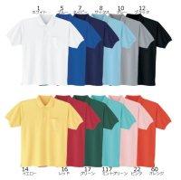 画像2: 007 半袖ポロシャツ・鹿の子(12色)